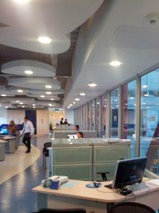 Proyecto Grupo Empresarial en Línea - Gelsa